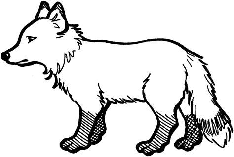 fox coloring pages free fox coloring pages