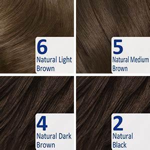 Clairol Nice 39 N Easy Permanent Hair Dye 109a 5wr Natural