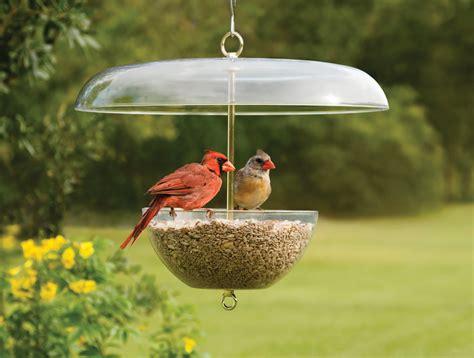cardinal bird feeder duncraft duncraft cardinal feeder