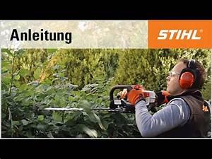 Benzin Heckenschere Stihl : schnitt technik benzin heckenschere r ckschnitt mit der stihl hs 81 r youtube ~ Frokenaadalensverden.com Haus und Dekorationen