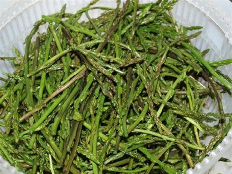 cuisiner des asperges sauvages asperge sauvage nature gastronomique et médicinale