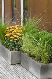 Plantes D Hiver Extérieur Balcon : plantes pour jardin d hiver pivoine etc ~ Nature-et-papiers.com Idées de Décoration