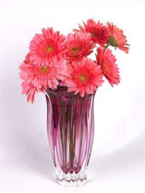 simplicity   keynote   true elegance flower