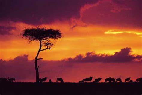 reisen nach kenia urlaub reiseinformationen fluege