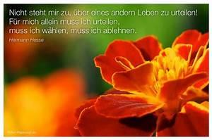 Best 25+ Herman... Urteilen Quotes