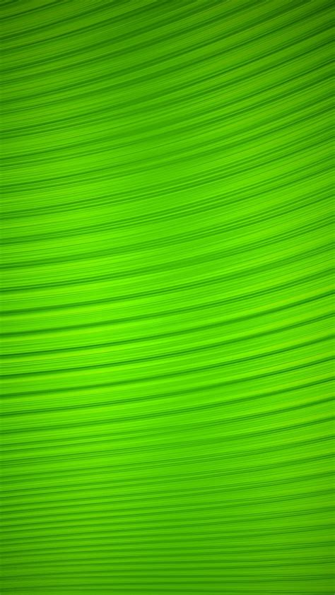3d Wallpaper Green Screen by Wallpaper Neon Green Iphone 2019 3d Iphone Wallpaper