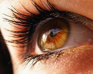 Rare Human Eye Colors - amber | Look into my eyes ...