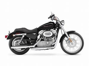 Xl 883c Sportster Custom  1998