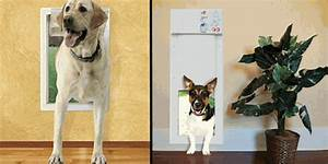 On sale world39s best dog doors cat doors pet ooors for Dog doors for sale