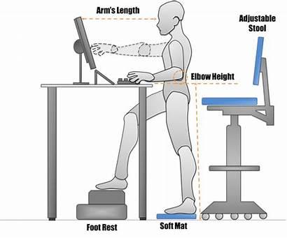 Desk Standing Stand Sitting Safety Ergonomics Workstation