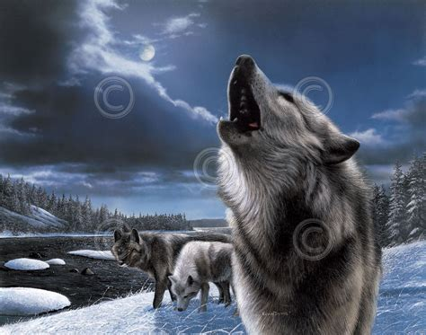Howling Wolf By Kevin Daniel Wolves