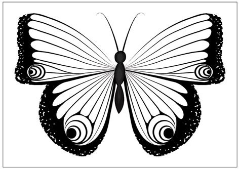 printable fun butterfly coloring pages  kids