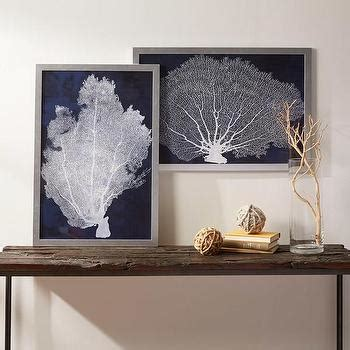framed coral prints set   pottery barn
