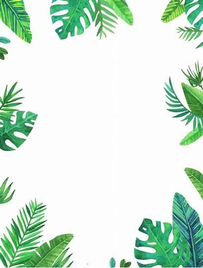 Leaves Frame Leaf Tropical Palms Picsart Sticker