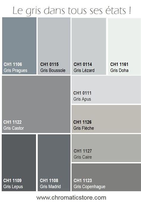 couleur tendance chambre adulte les 25 meilleures idées de la catégorie salon gris sur