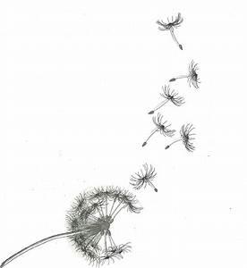Dessin D Hirondelle Pour Tatouage : dessin de travail sur une base de pissenlits www ~ Melissatoandfro.com Idées de Décoration