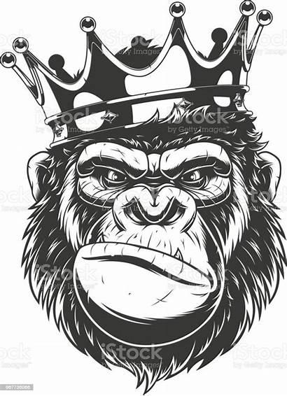 Gorilla Head Crown Clipart Monkey Kopf Stickers