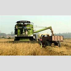 Combine Harvester India Youtube