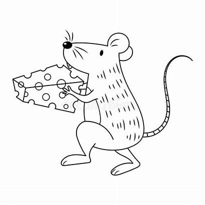 Mouse Cheese Coloring Colorless Carrying