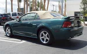 Tropic Green 2003 Ford Mustang GT Convertible - MustangAttitude.com Photo Detail