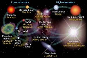 File Star Life Cycles Red Dwarf En Svg