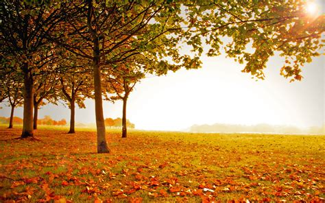 landscape photos autumn - HD Desktop Wallpapers | 4k HD