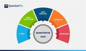 Quantitative Data  Definition  Types  Analysis And