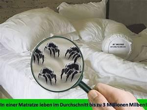 Milben Im Teppich :  ~ Markanthonyermac.com Haus und Dekorationen