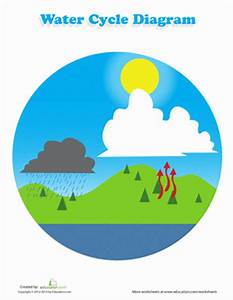 Label the Water Cycle | Worksheet | Education.com