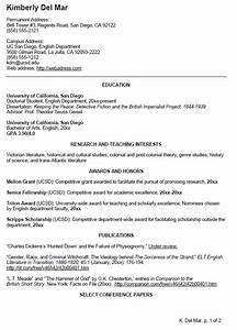 english cv sample writing your curriculum vitae resume With curriculum vitae examples for students