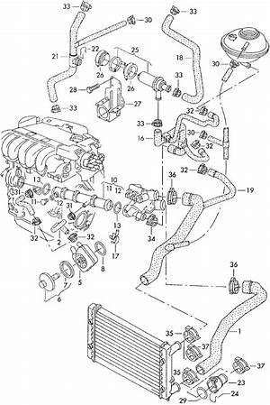 03 Volkswagen 2 8 Engine Diagram 41114 Enotecaombrerosse It