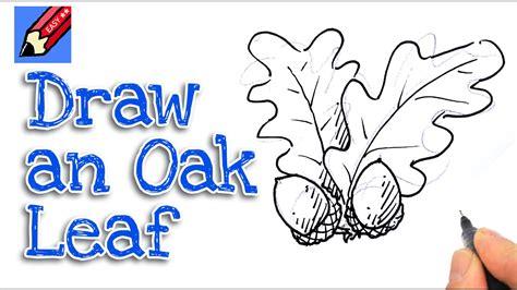 draw acorns oak leaves real easy spoken tutorial youtube