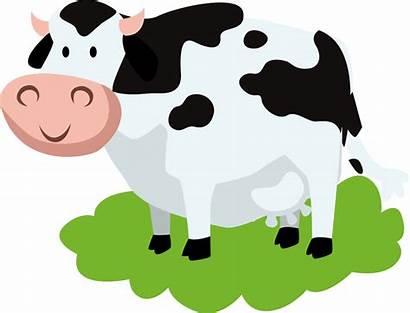 Vaca Clipart Lechera Cow Cows Transparent Vacas