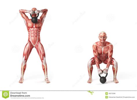 kettlebell pull exercise illustration muscle dreamstime illustrations pulled fotosearch