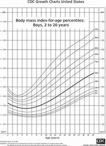 Bmi Charts For Girls File Bmiboys 1 Svg Wikimedia Commons