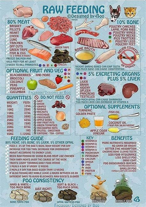 table food for dogs diet