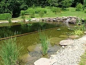 comment construire une piscine naturelle en 10 etapes pour With comment construire une piscine naturelle