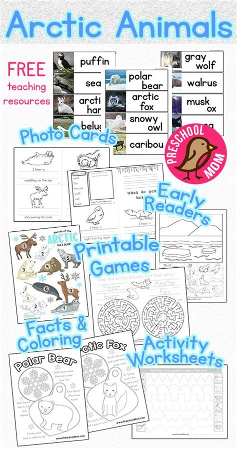 25 best ideas about arctic animals on 857 | 979f9c1fe1102d76bfe93847a369f3d2 arctic habitat activities arctic animals kindergarten