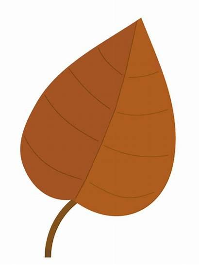 Leaf Leaves Clip Brown Clipart Fall Autumn