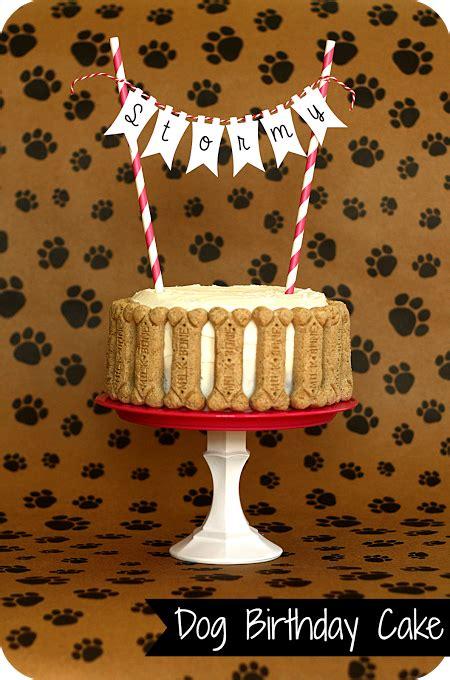 dog birthday cake totally making   monday