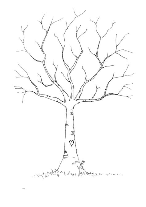 leafless tree outline printable   clip