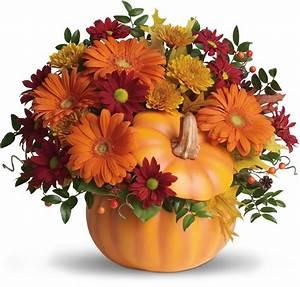 For, My, Pumpkin
