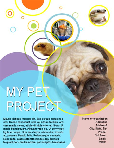 view flyers brochures letterhead flyer poster