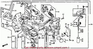 Honda Xr350r 1983  D  Usa Carburetor 83-84