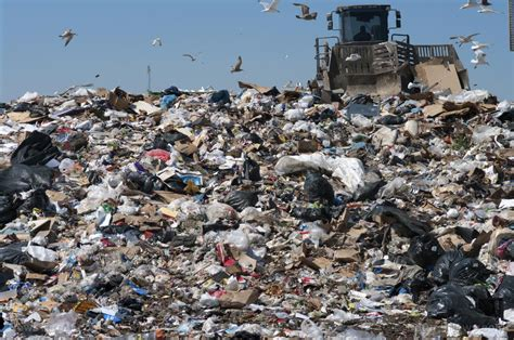 The End Of Plastic Landfill? Researchers Discover
