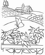 Coloring Sunflower Farm Pages Farmer Sheets Garden Printable Sunflowers Colouring Sheet Farms Flowers Sky Pdf sketch template