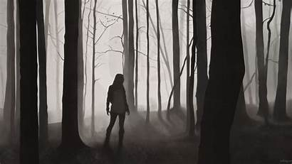 Forest Silhouette Woods Misty Dark Alone Trees