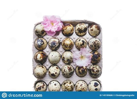 Today we are pleased to present you free square paper box mockup. Eggs and blossom in box. stock photo. Image of brown ...
