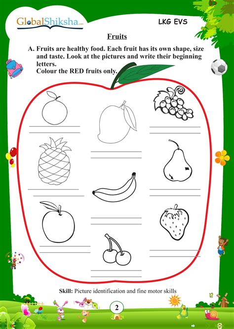 worksheet  kindergarten evs