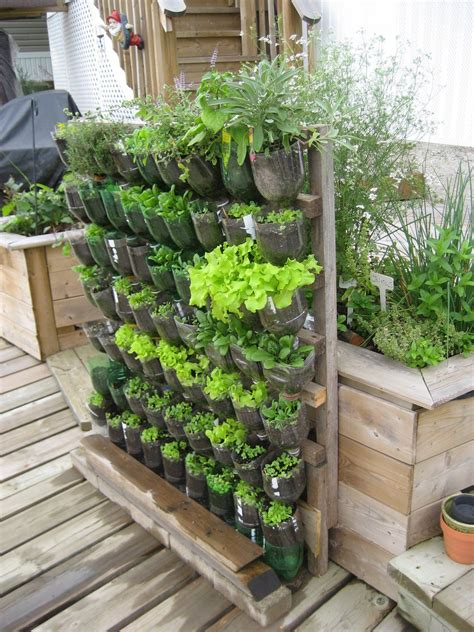 Vertical Garden Cost by The Aim To Build A Low Cost Vertical Garden Using As Much
